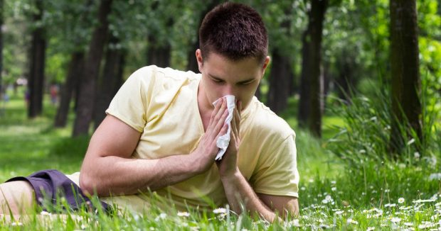 ¿Cuáles son las causas más comunes de una reacción alérgica al césped?