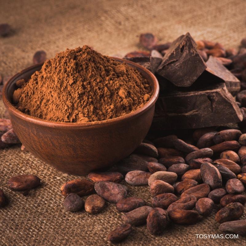 Chocolate o cacao crudo